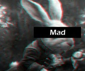 mad, rabbit, and alice in wonderland image
