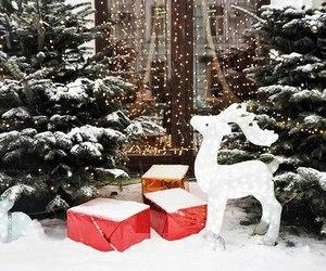 deer, holiday, and holidays image