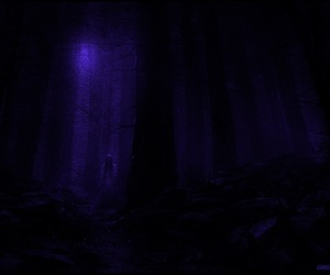 Darkness, forest, and nights image