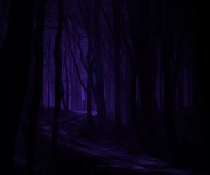 Darkness, forest, and grunge image