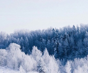 russia, winter, and forest image