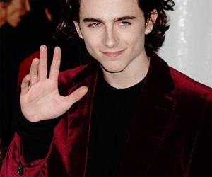 beautiful smile, cutie, and timothee chalamet image
