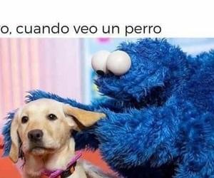 dogs, perros, and mi mejor amigo image