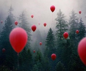 forest, balloons, and tree image