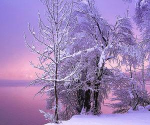 christmas, seasons, and Christmas time image