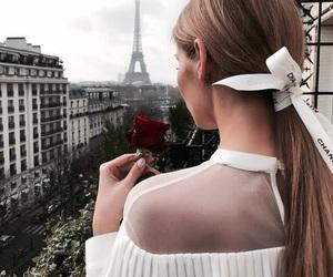 paris, hair, and rose image