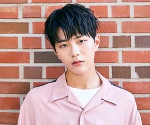 debut, bomin, and kpop image