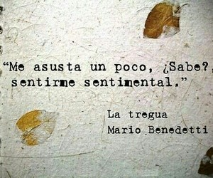 frases, mario benedeti, and quotes image