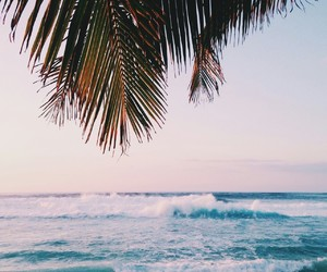 beach, sky, and travel image