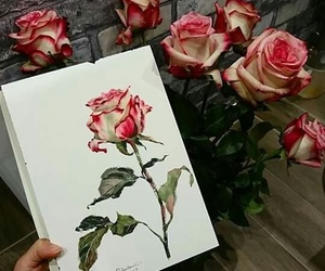 rose, beautiful, and art image