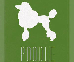 animal, green, and typography image