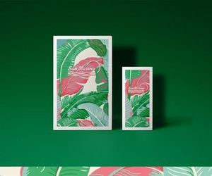 branding, tropical, and green image