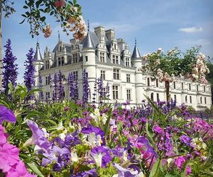 castle, france, and loire image