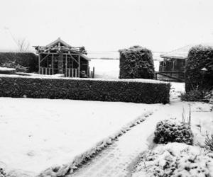 dutch, freezing, and nature image
