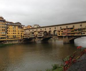 firenze, love, and florence image