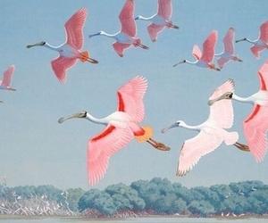 pink, bird, and pastel image