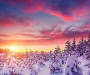 sunset, snow, and tree image