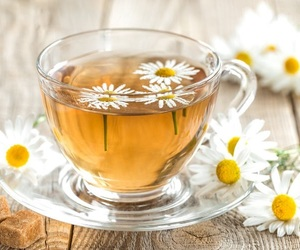 beverages, camomile, and camomilla image