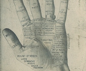 palmistry, 1900s, and hand image