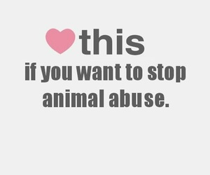 heart, weheartit, and animal abuse image