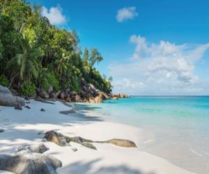 beaches, beachlife, and coastline image