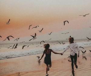 beach, birds, and couples image