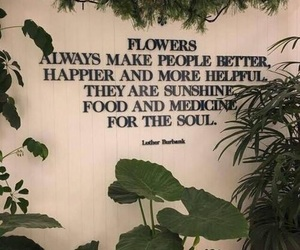 quotes, flowers, and plants image