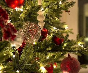 holiday, christmas, and christmas tree image