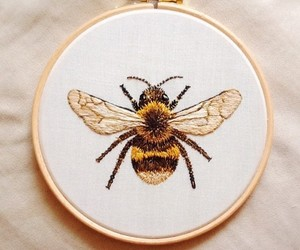 bee, tumblr, and aesthetic image