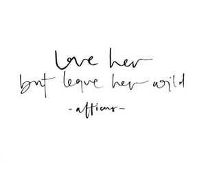 quotes, love, and wild image