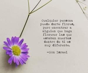 amor, frases, and gracias image