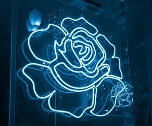 rose, red, and neon image