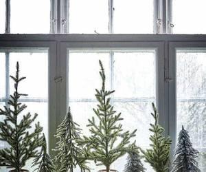 christmas and tree image