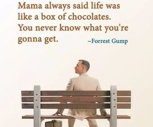 forrest gump, movie, and quotes image