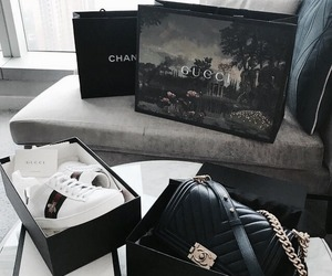 chanel and gucci image