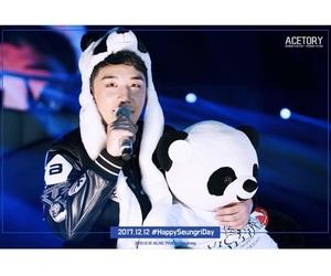 panda, seungri, and bigbang image