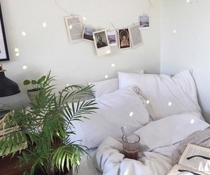 inspiration, plants, and polaroid image