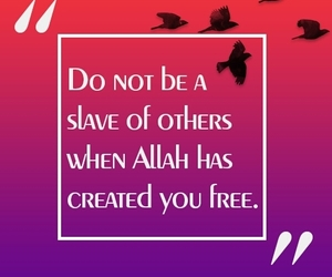 allah, free, and islam image