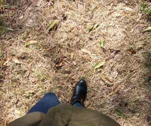 forest, green, and boots image