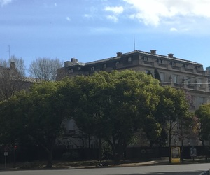 buenos aires, flowers, and buildings image