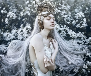 crown, fairytale, and flowers image