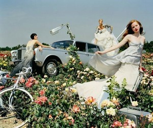 flowers, car, and tim walker image