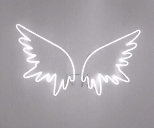 wings, white, and light image