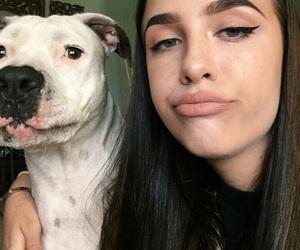 alternative, dog, and puppy image