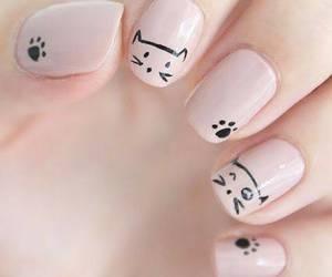 uñas and nails. cats image