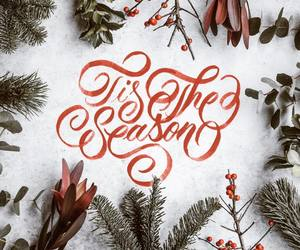 calligraphy, christmas, and handlettering image