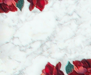 rose, wallpaper, and marble image