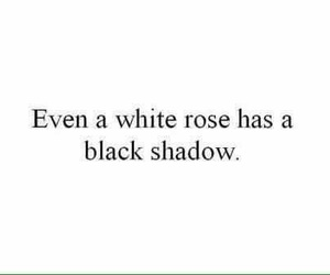 quotes, rose, and shadow image