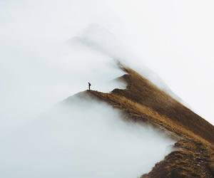 nature, fog, and photography image