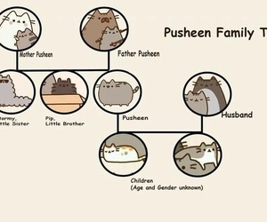 anime, cat, and pusheen image